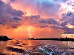 Taylor took this picture  8/31/14 in Crystal River, Florida
