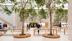 apple-regent-street-foster-partners-london_dezeen_2364_col_9 Retail Space, Uk Retail, Retail Stores, Visual Merchandising, Regent Street, Foster Partners, Indoor Trees, Retail Store Design, Apple New