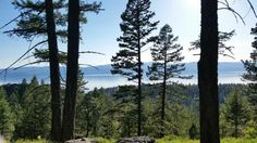 MLS# 21604399   Incredible Flathead Lake views from this 5 acre parcel within walking distance to downtown Bigfork. Open expansive lake views with minimal thinning of smaller trees. Great opportunity to build with privacy and yet close to everything and exceptional Flathead Lake view. Equal Housing Opportunity. Information deemed reliable but not guaranteed by National Parks Realty. Listed by: Mike Pederson