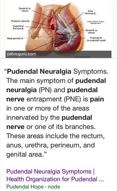 Pudendal Neuralgia Treatment Amp Symptoms The Pudendal
