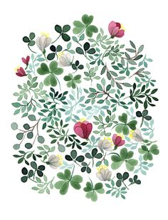 Clover illustration