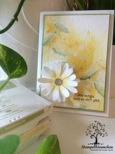 Stampin Up Daisy Delight, Daisy punch