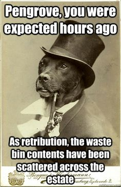 Old Money Dog