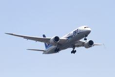 ANA B787-8(JA809A) Dreamliner | Tokyo International Airport, Boeing 787-881 Dreamliner, c/n:34494, All Nippon Airways,