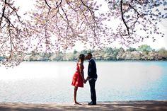 Engagement Photos - Washington DC Cherry Blossoms www.cynthiaroelle.com Cynthia Roelle Photography »