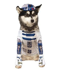 Rubies Star Wars R2-D2 #Halloween Pet Costume #zulilyfinds