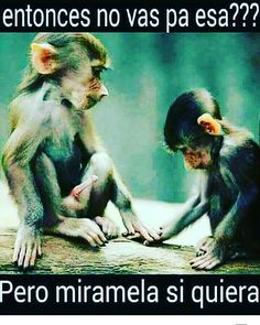 "14 Me gusta, 3 comentarios - Gigysmilelaheroina (@sos____venezuela) en Instagram: ""🤗🙂"""