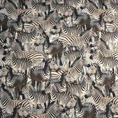 Zebra digital tricot