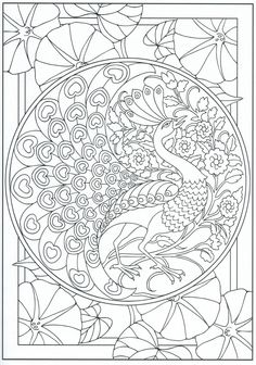 Peacock coloring page 30 31