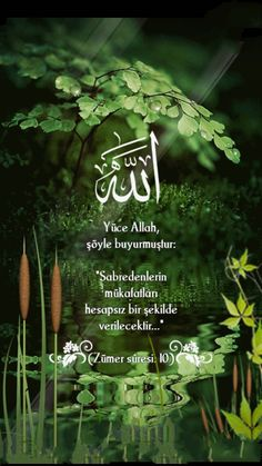 Islam Muslim, Allah Islam, Allah Names, Islamic Pictures, Sufi, Meaningful Words, Quotes About God, Islamic Quotes, Quran