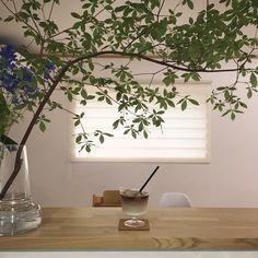 Japan Interior, Cafe Interior, Apartment Interior, Modern Interior, Interior And Exterior, Flower Cafe, Boutique Interior, Interior Plants, Green Rooms
