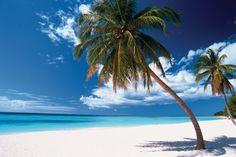 Dominican-Republic-Plages-La-Romana-Republique-Dominicaine-plage-ile-Saona