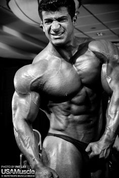 Resultado de imagem para Casey Fathi bodybuilding