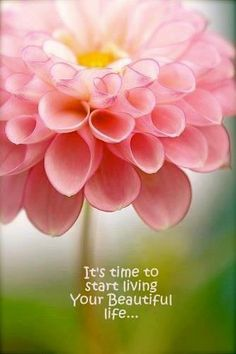 ... wallpaper on life it s time to start living your beautiful life