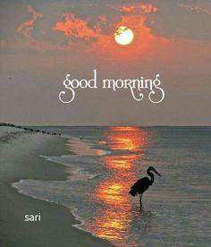 Good Morning Friends Images, Good Morning Beautiful Images, Good Morning Messages, Good Morning Wishes, Good Morning Quotes, Good Morning Friday, Cute Good Morning, Good Morning Flowers, Good Morning Good Night