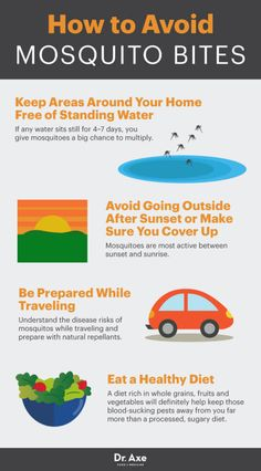 How to avoid mosquito bites - Dr. Axe