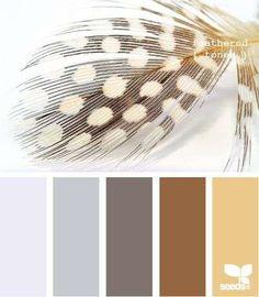Bekijk 'Kleurinspiratie veren bruin en grijs' op Woontrendz ♥ Dagelijks woontrends ontdekken en wooninspiratie opdoen!
