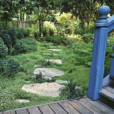 To soften an expanse of brick or concrete, plant walk-on ground cover (like aromatic 'Elfin' thyme) between pavers. | Photo: Saxon Holt | thisoldhouse.com