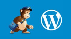"""Ultimate Guide to Using MailChimp and WordPress: """"More than 70% of users who abandon your website will probably never come back unless they buy something from you, or you successfully get them to subscribe to your email list. Email is private, personal, and by far the most direct form of communication on the internet."""""""