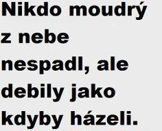 Funny Texts, Haha, Funny Pictures, Jokes, Wisdom, Fanny Pics, Husky Jokes, Ha Ha, Funny Pics