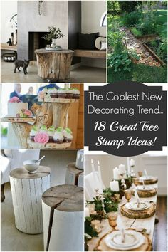Love the stepping slices  The Coolest New Decorating Trend: 18 Great Tree Stump Decor Ideas