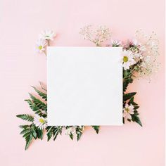 17 ideas flowers png overlay for 2019 V Instagram, Instagram Frame, Story Instagram, Instagram Story Template, Flower Backgrounds, Wallpaper Backgrounds, Iphone Wallpaper, Polaroid Template, Frame Template