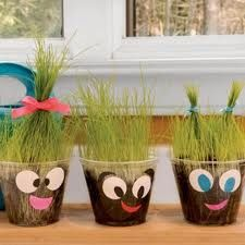 Crazy grass hair cups.