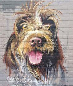 Dog Street Art♥♥