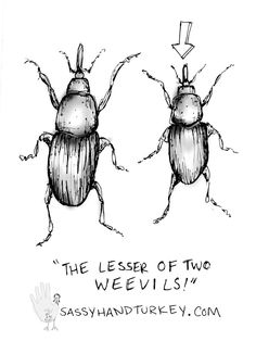 The Lesser Of Two Weevils