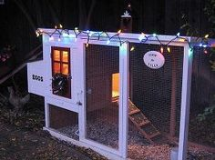 chicken coop, homesteading, I found the coop online for 140 With a little paint and decorations it turned out very cute