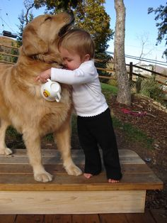 Dogs And Kids, Cute Dogs And Puppies, Baby Dogs, Animals For Kids, Cute Baby Animals, I Love Dogs, Animals And Pets, Funny Animals, Doggies