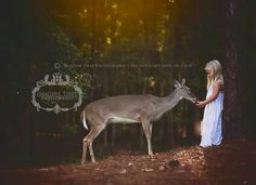 Deer and girl photo shoot