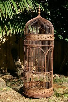 "French antique bird cage. Paint it With Annie Sloan Old White, sand to 'age' and ""voila""!  This would have been a beautiful home for my cockatiel."