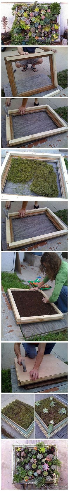 OP wrote: picture frame succulent planter {vertical planters for salad greens & herbs, too}