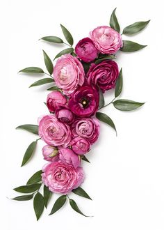 Shay Cochrane / In the shop: Dark Pink Floral Styled Stock My Flower, Pink Flowers, Beautiful Flowers, Music Flower, Deco Floral, Arte Floral, Belle Image Nature, No Rain, Belle Photo