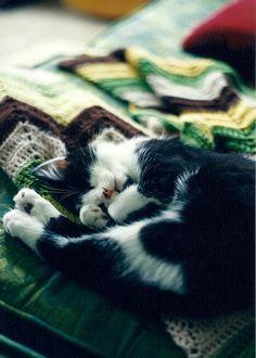 {shhh. he's sleeping} so cute + love the blanket!