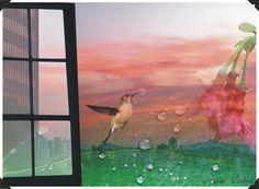 2009 - Desenvolvimento de Coleção - Coleção de Formatura - 'Encantado Olhar Imenso' - Painel Imagético