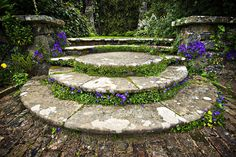 Beautifully Planted Stone Garden Steps by Meirion Matthias