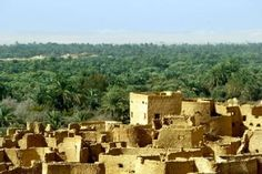 siwa oasis, sahara desert