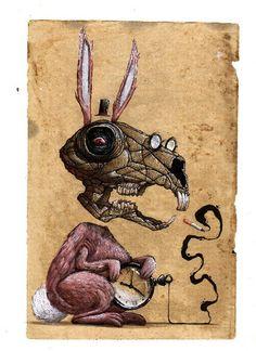 Pink Rabbit by Veks Van Hillik