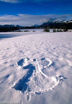 Beauty snow angel ~ Looking forward to making snow angles this year.
