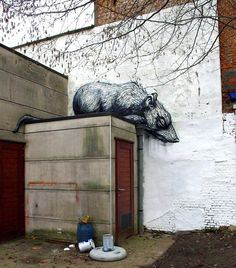 Rat. Artist- Roa Location- Doel, Belgium.