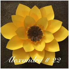 Paper flower template #22