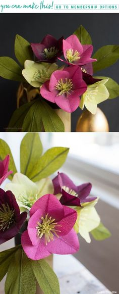 Crepe Paper Hellebores - Lia Griffith - www.liagriffith.com #diyinspiration #paperflower #paperflowers #crepepaperflowers #crepepaperrevival #diyproject #diyprojects #cricutmade #madewithlia