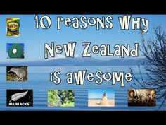 10 Reasons why New Zealand is awesome