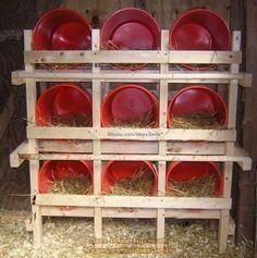 Backyard Chicken Coops, Chicken Coop Plans, Building A Chicken Coop, Diy Chicken Coop, Chickens Backyard, Chicken Roost, Simple Chicken Coop, Chicken Tractors, Clean Chicken