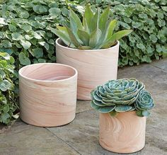 These new modern planters from West Elm is a very interesting solution to dress up indoor and outdoor flora. They looks like they are made of natural wood Modern Planters, Wood Planters, Indoor Planters, Succulent Landscaping, Succulents Garden, Garden Plants, West Elm Planter, Popular House Plants, Growing Grass