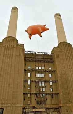 "Who said ""Pigs can't fly""? Shooting for the Animals album cover at the Battersea Power Station, London."
