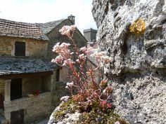 La Couvertoirade en Aveyron - France