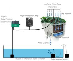 Great Solar powered hydroponic automated watering system.